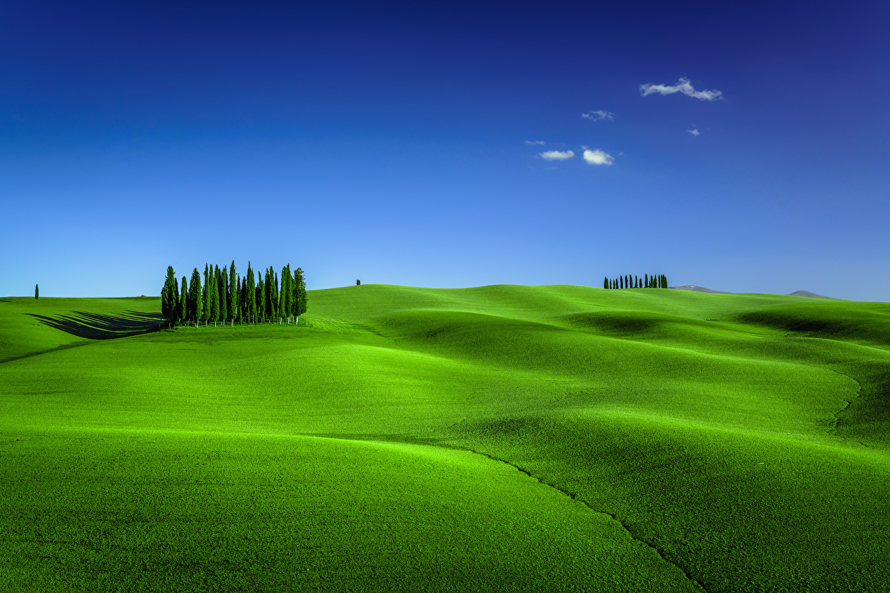 Picture Tuscany Italy Torrenieri Nature Sky Hill Meadow Trees Grasslands