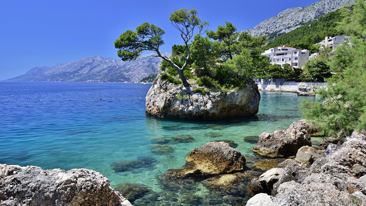 Picture Croatia Sea Nature Cove Coast Stones