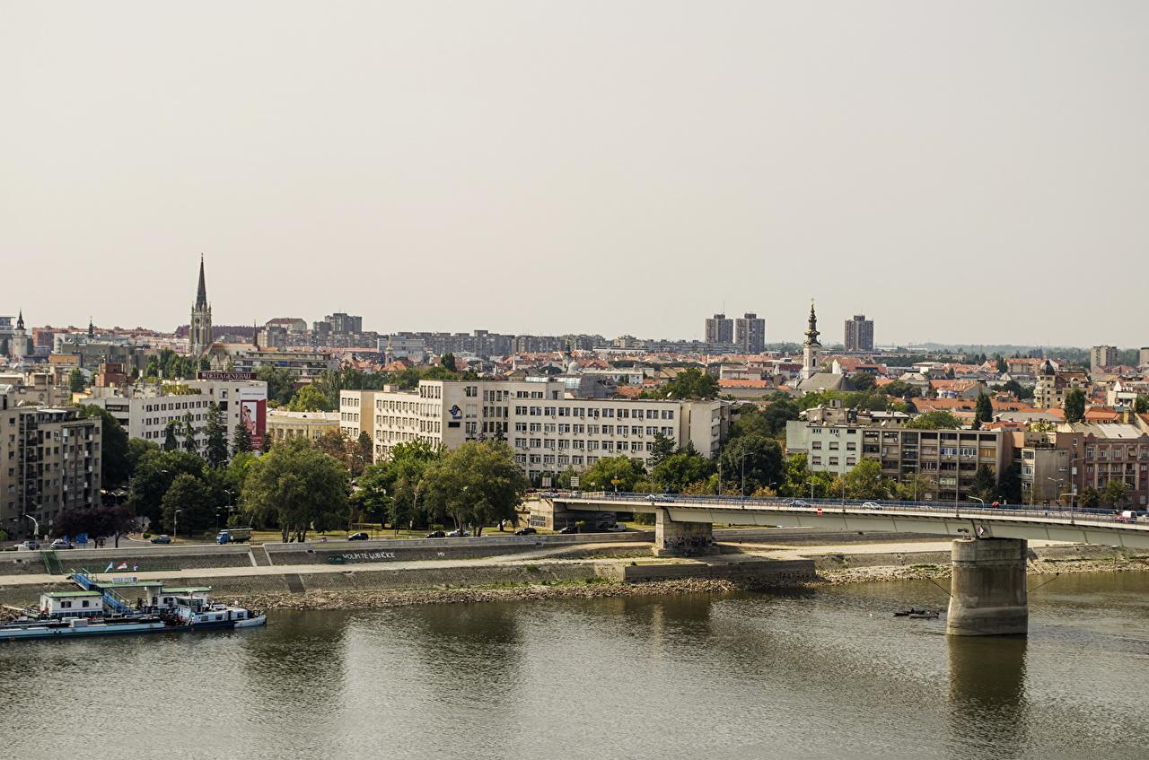 ,橋,房屋,Novi Sad,塞尔维亚,建筑物,城市,