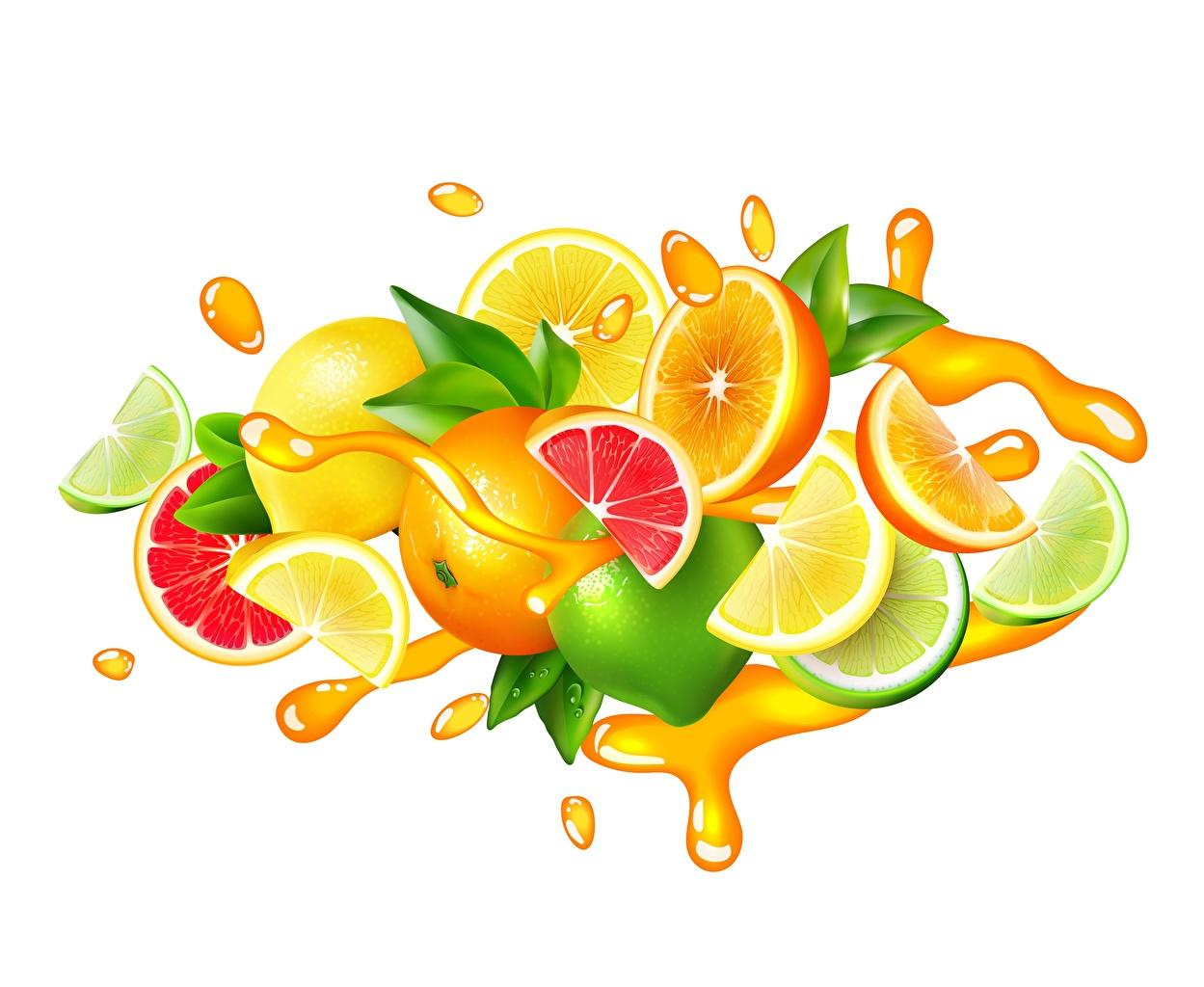 Picture Lime Juice Grapefruit Lemons Water splash Food Citrus Vector Graphics White background
