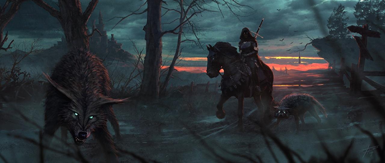 Image horse Wolves Gothic Fantasy warrior Fantasy Hood headgear wolf Horses Warriors hooded