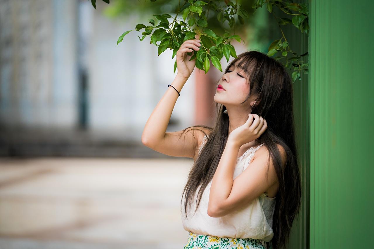 Desktop Hintergrundbilder Brünette unscharfer Hintergrund Mädchens Asiaten Ast Hand Bokeh junge frau junge Frauen Asiatische asiatisches