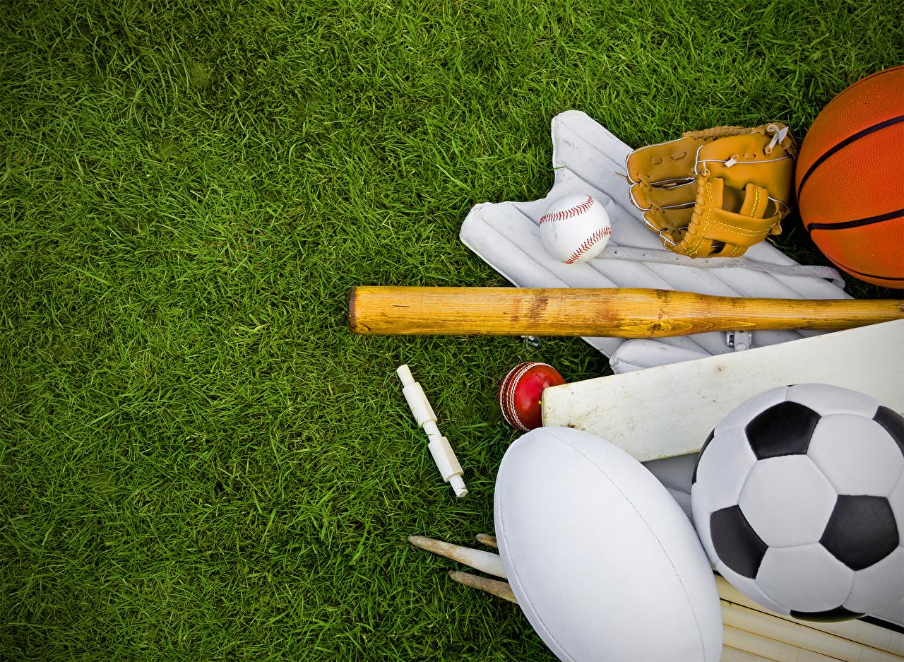 壁紙 芝 スポーツボール 野球バット スポーツ ダウンロード 写真
