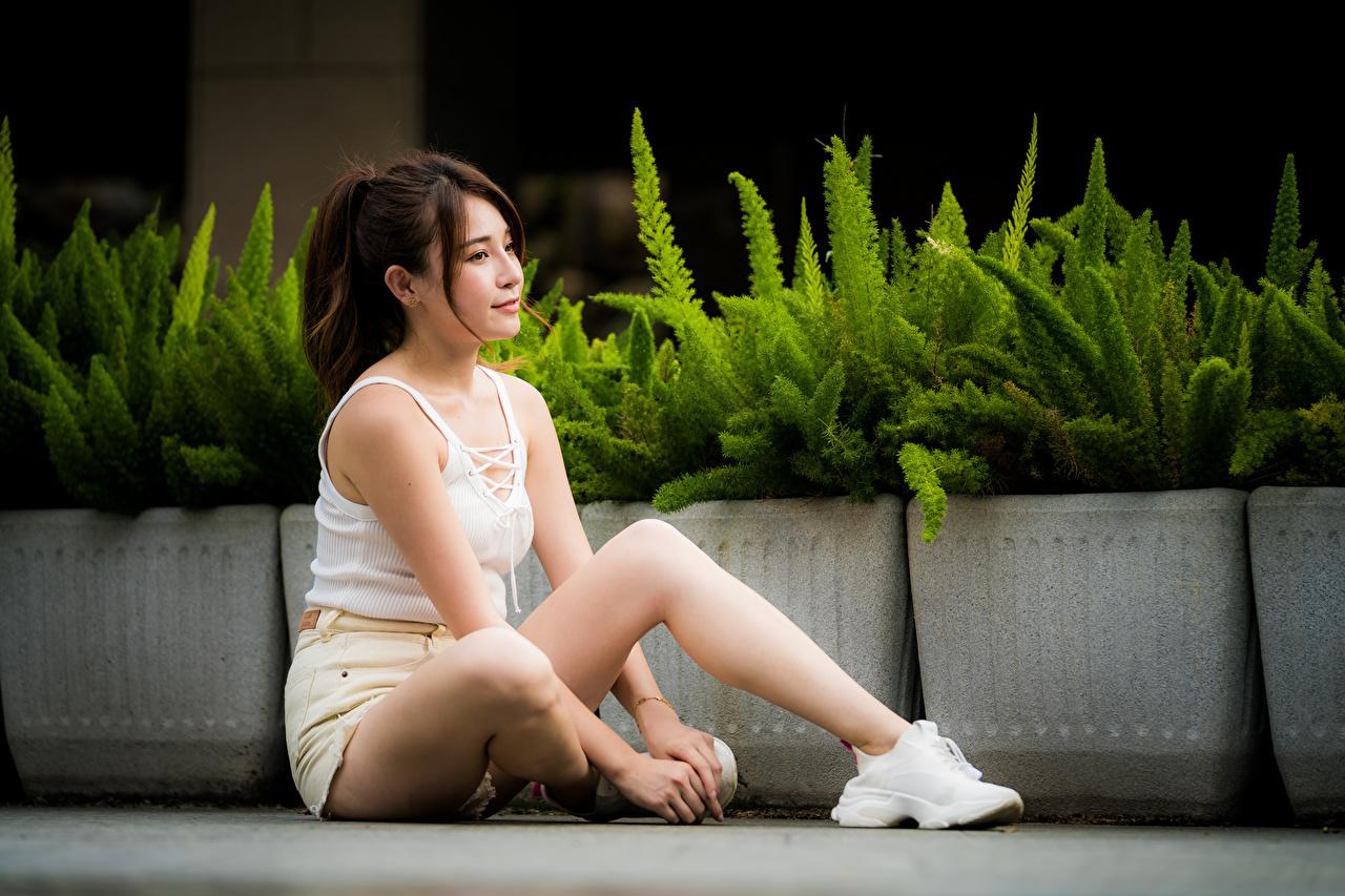 Fotos junge Frauen Bein Unterhemd Asiatische Shorts Sitzend Mädchens junge frau Asiaten asiatisches sitzt sitzen