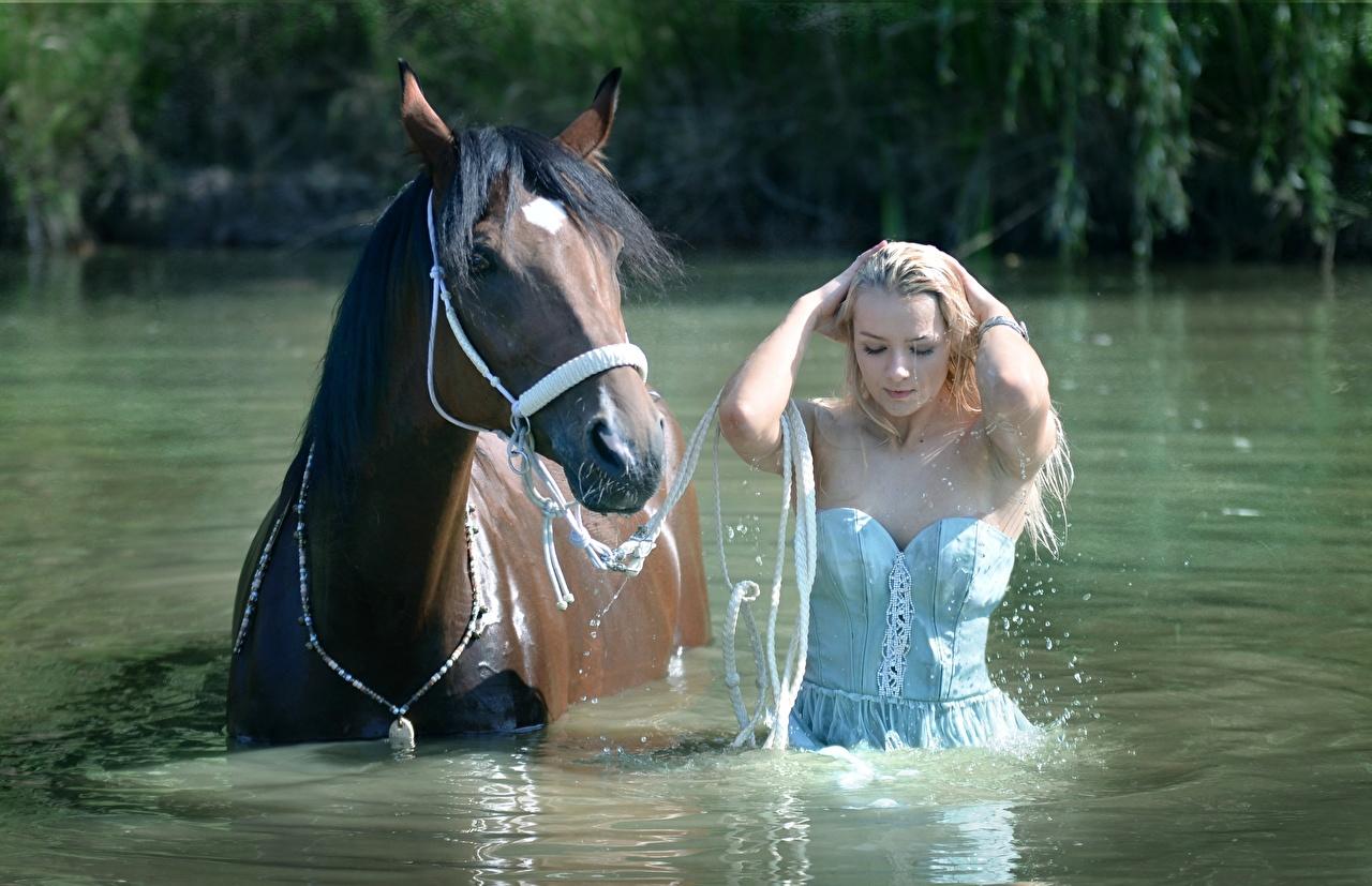 Desktop Hintergrundbilder Pferde Blondine hübsch Mädchens Wasser Nass Pferd Hauspferd Blond Mädchen Schön schöne schönes schöner hübsche hübscher junge frau junge Frauen