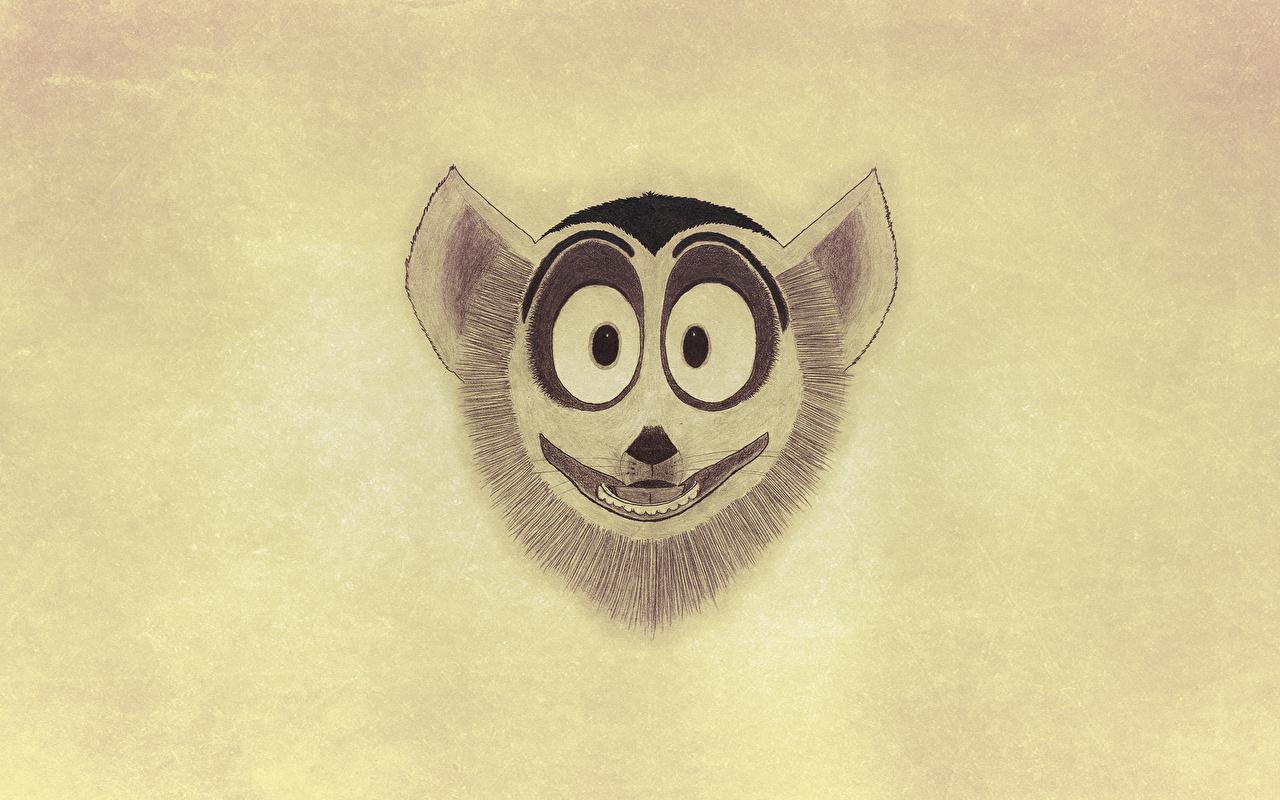 Hintergrundbilder Madagascar Lemuren Zeichentrickfilm Kopf 1280x800 Animationsfilm