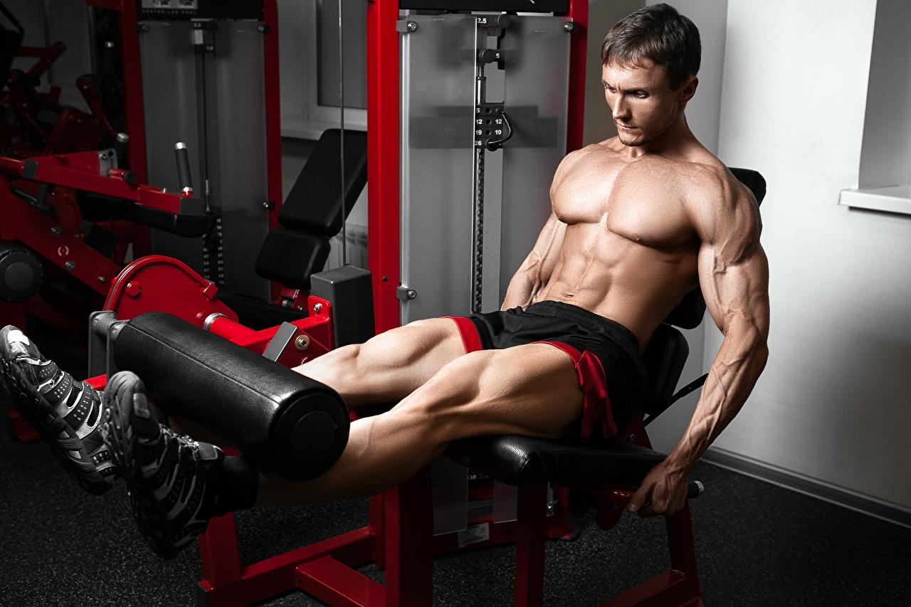 Fotos von Mann Muskeln Trainieren Fitnessstudio sportliches Bein Bodybuilding Hand Bauch Turnhalle Körperliche Aktivität Sport