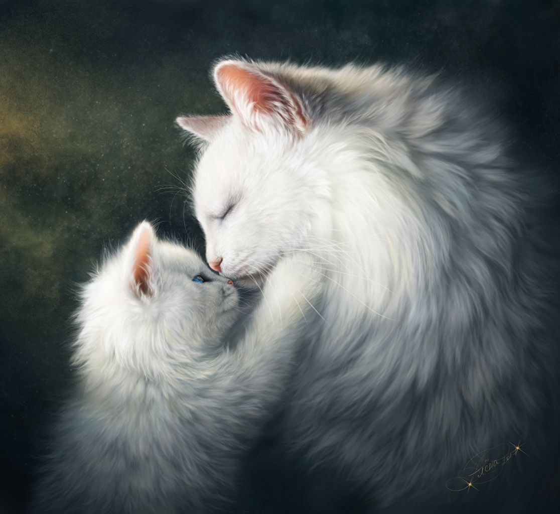 Wallpaper kitty cat Cats Cute Two Love White Animals Painting Art