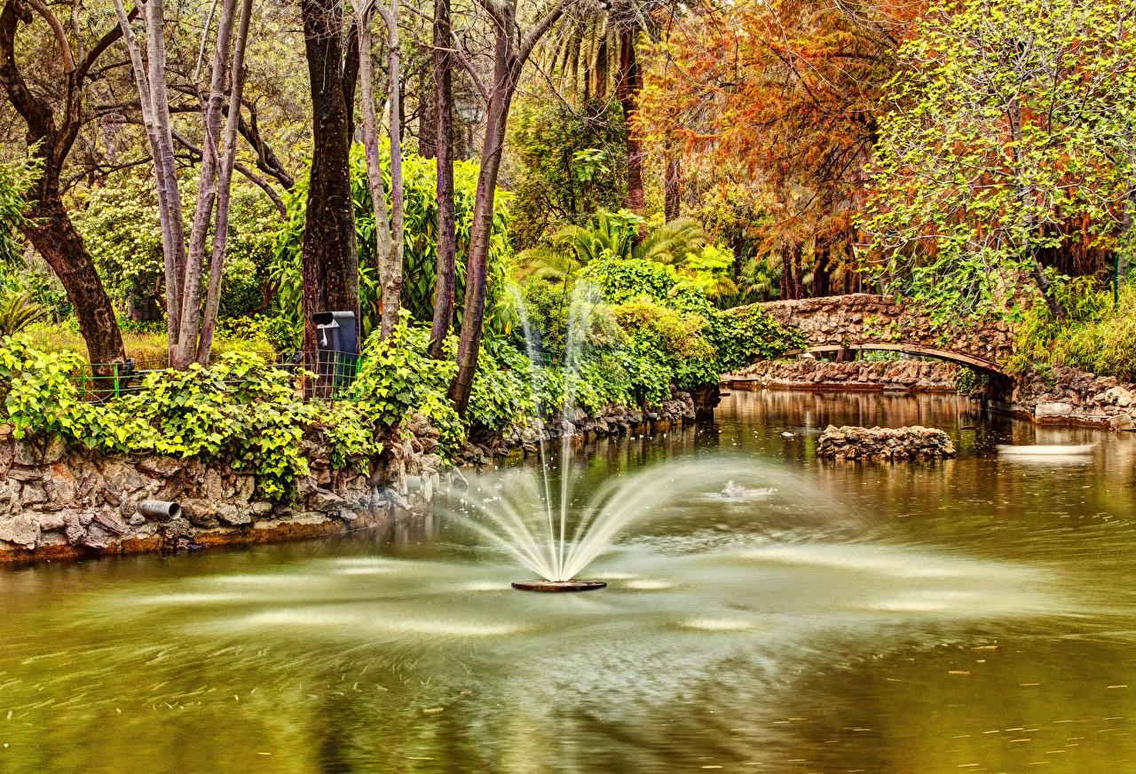 Fotos Spanien Springbrunnen Seville Maria Luisa Park Natur Brücken Teich Bäume