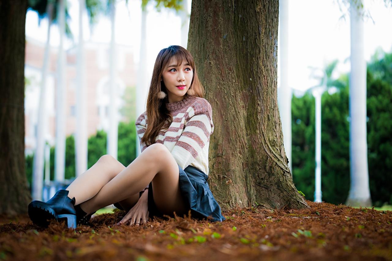 Fotos von Rock Braune Haare unscharfer Hintergrund Mädchens Bein Sweatshirt asiatisches sitzt Braunhaarige Bokeh junge frau junge Frauen Asiaten Asiatische sitzen Sitzend
