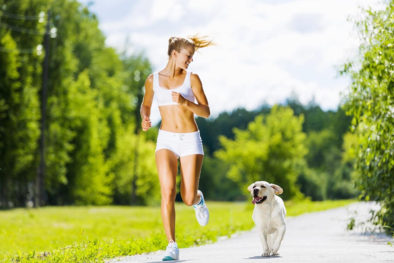 Foto Golden Retriever Hunde Blond Mädchen Laufen unscharfer Hintergrund Weg junge frau sportliches Shorts hund Blondine Lauf Laufsport Bokeh Sport Mädchens junge Frauen