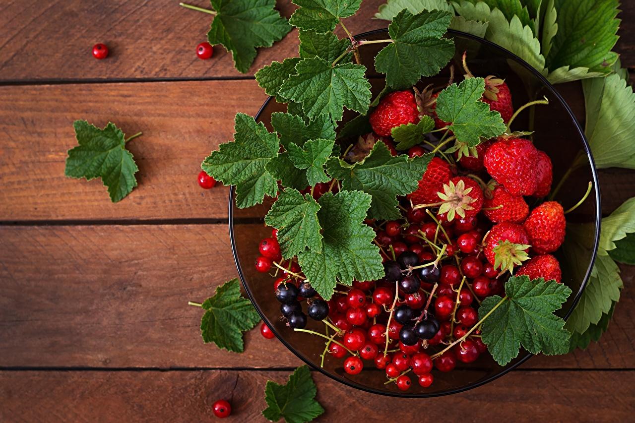 Desktop Hintergrundbilder Ribisel Erdbeeren Beere Lebensmittel Meertrübeli Johannisbeeren das Essen