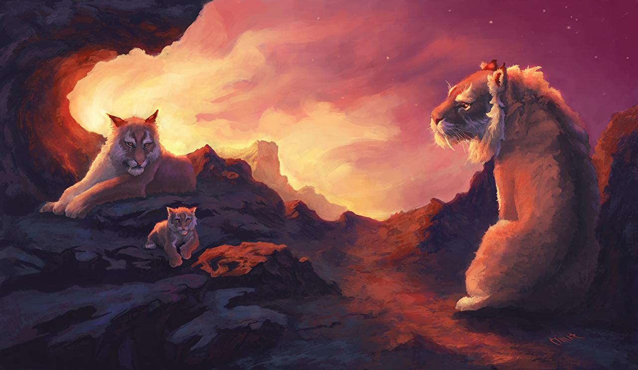 Desktop Wallpapers Cubs Family Three 3 Animals Ancient animals animal