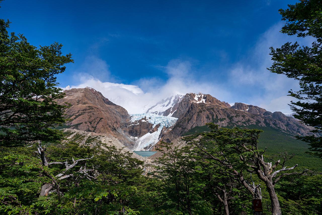 Photo Argentina Patagonia Nature mountain Sky Trees Mountains