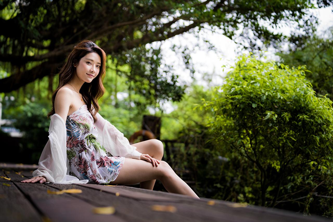 Bilder Mädchens Bein Asiaten sitzt Starren Kleid junge frau junge Frauen Asiatische asiatisches sitzen Sitzend Blick