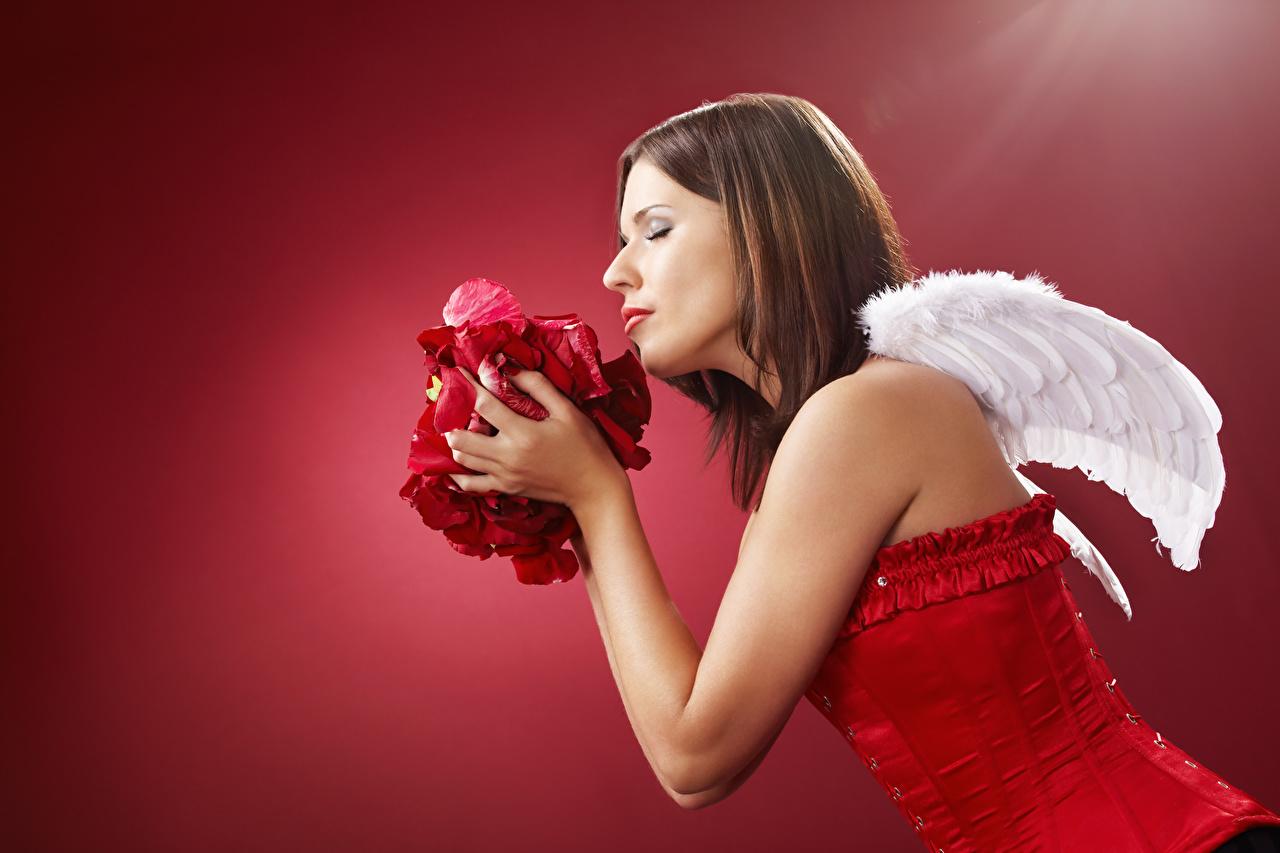 Ángel Fondo rojo Ala Lateralmente Cabello castaño Corsé Mano Pétalo mujer joven, mujeres jóvenes, ángeles, pelo castaño, pétalos Chicas