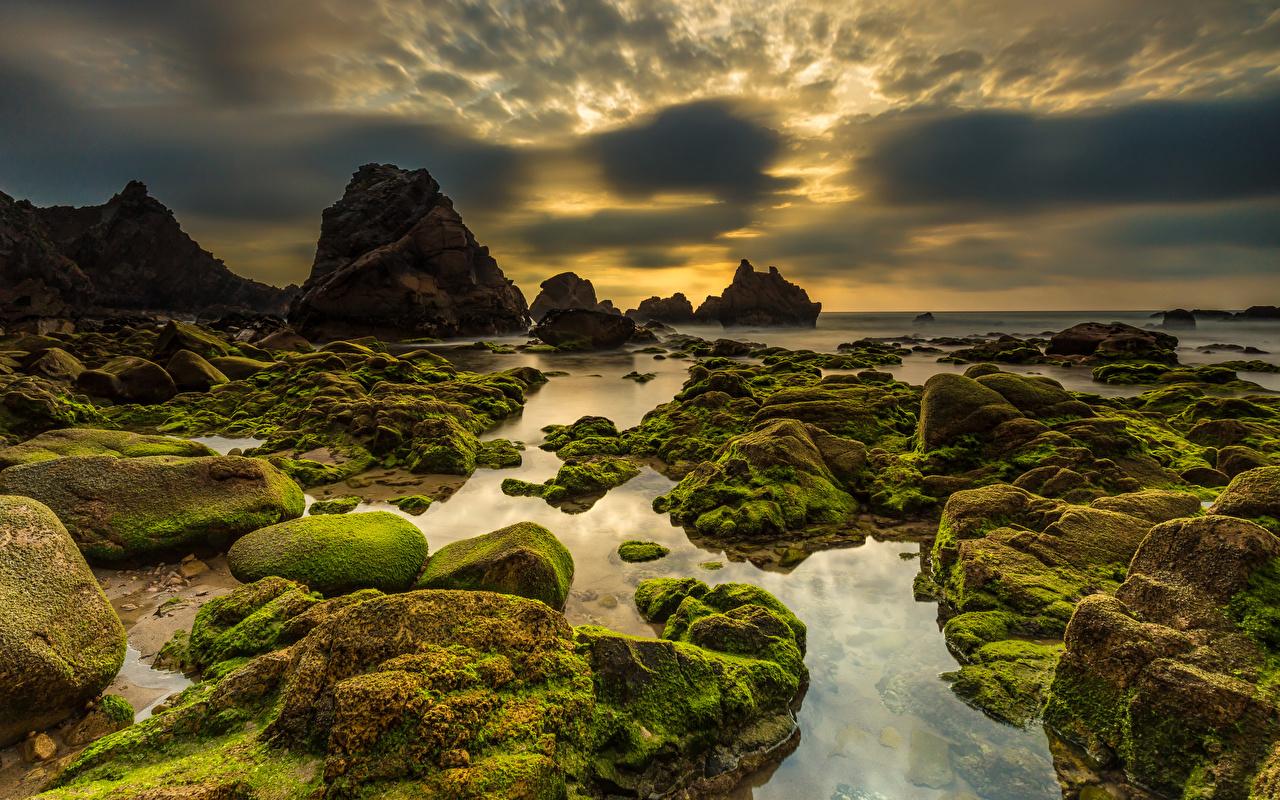 Fotos Portugal Praia da Ursa Sintra Natur Felsen Himmel Abend Stein Küste Laubmoose Wolke Steine