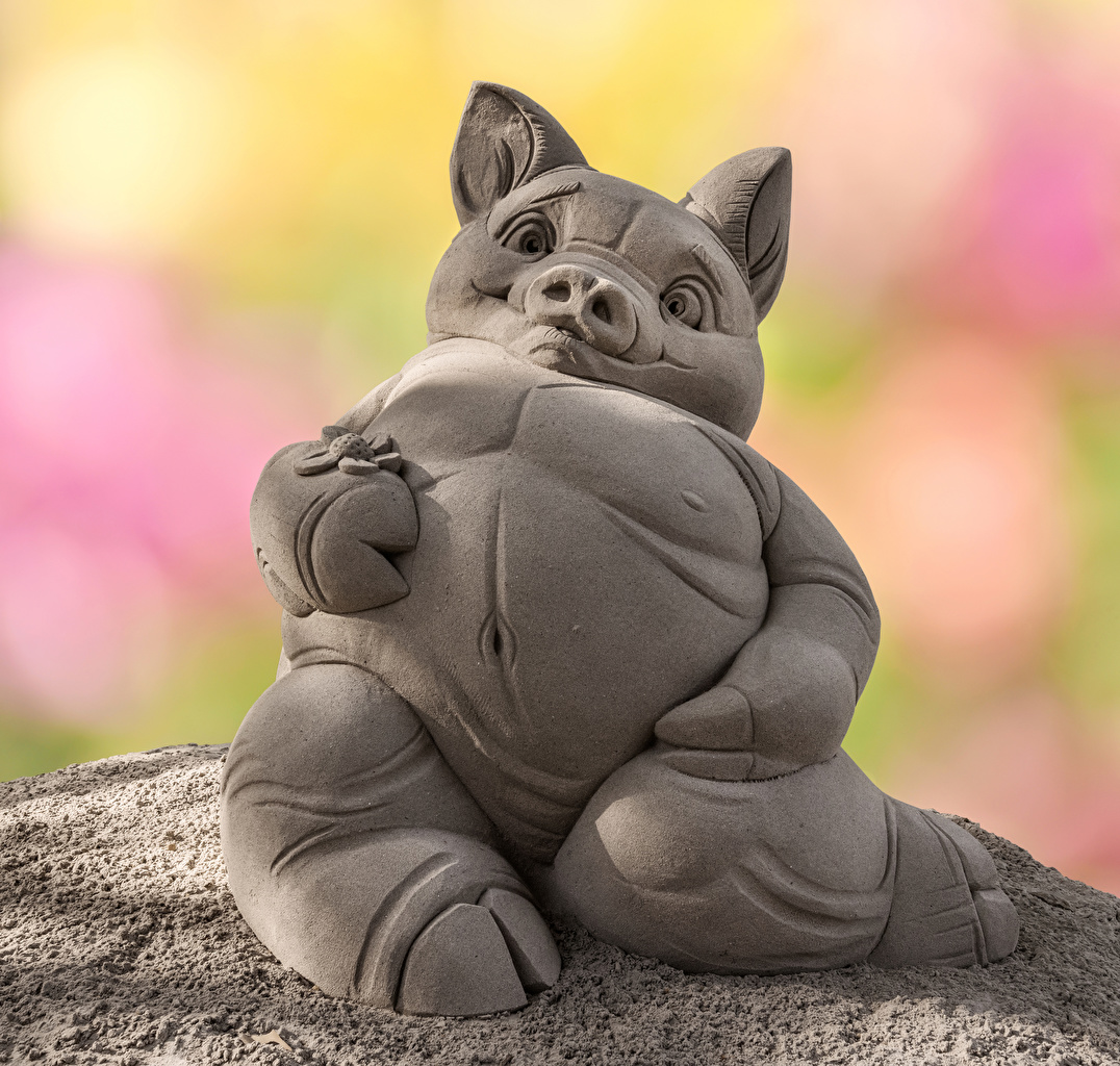 Bilder von Hausschwein Sand ein Tier Skulpturen Tiere