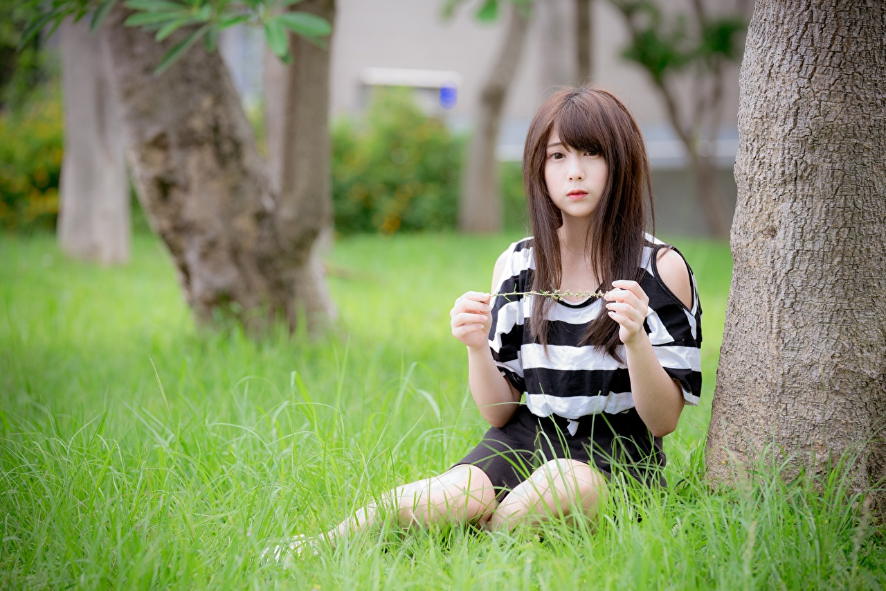 Photos Brown haired Bokeh Girls Asiatic sit Hands Grass blurred background female young woman Asian Sitting