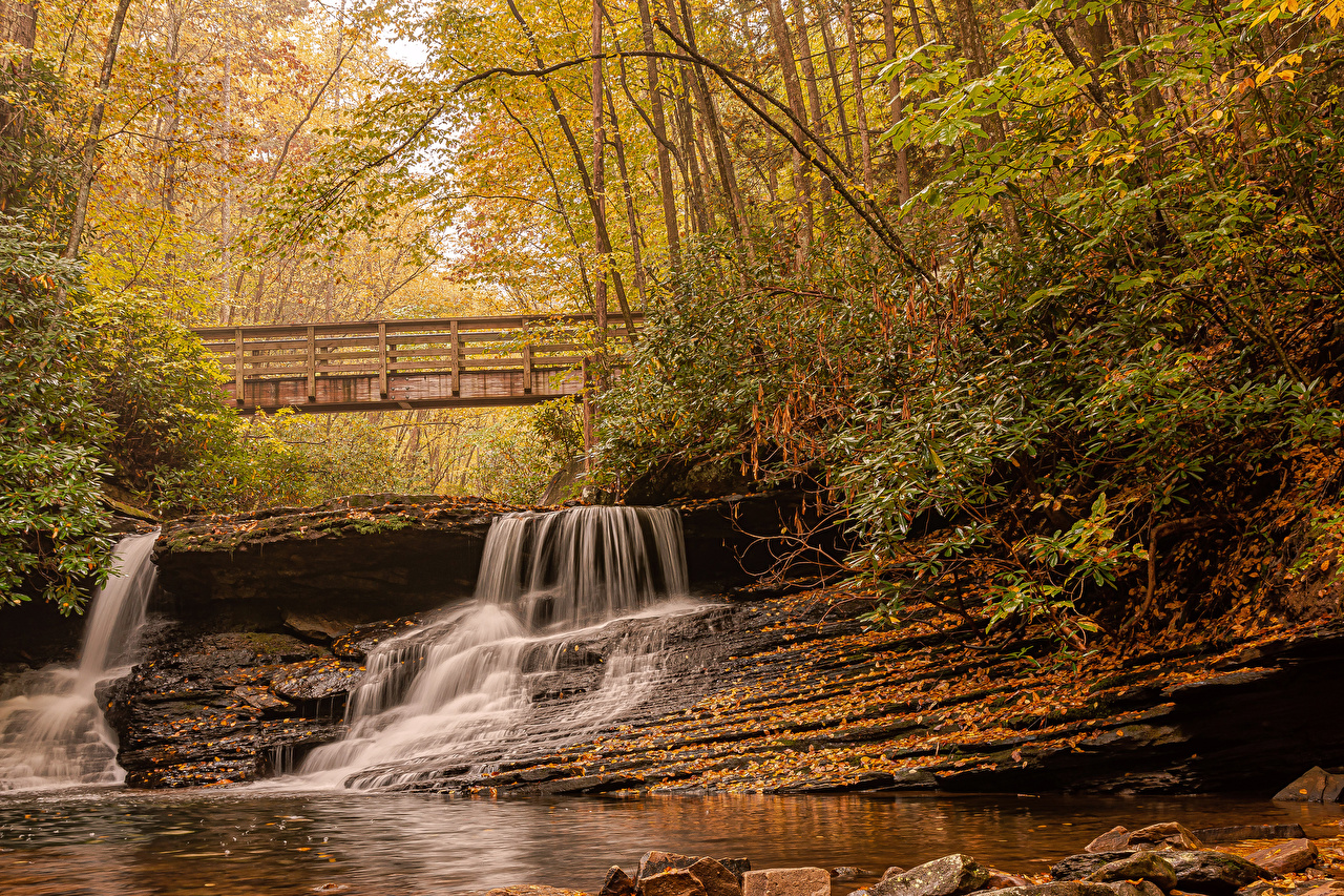 Photos USA Jefferson National Forest Virginia Autumn Nature Bridges Waterfalls Trees bridge