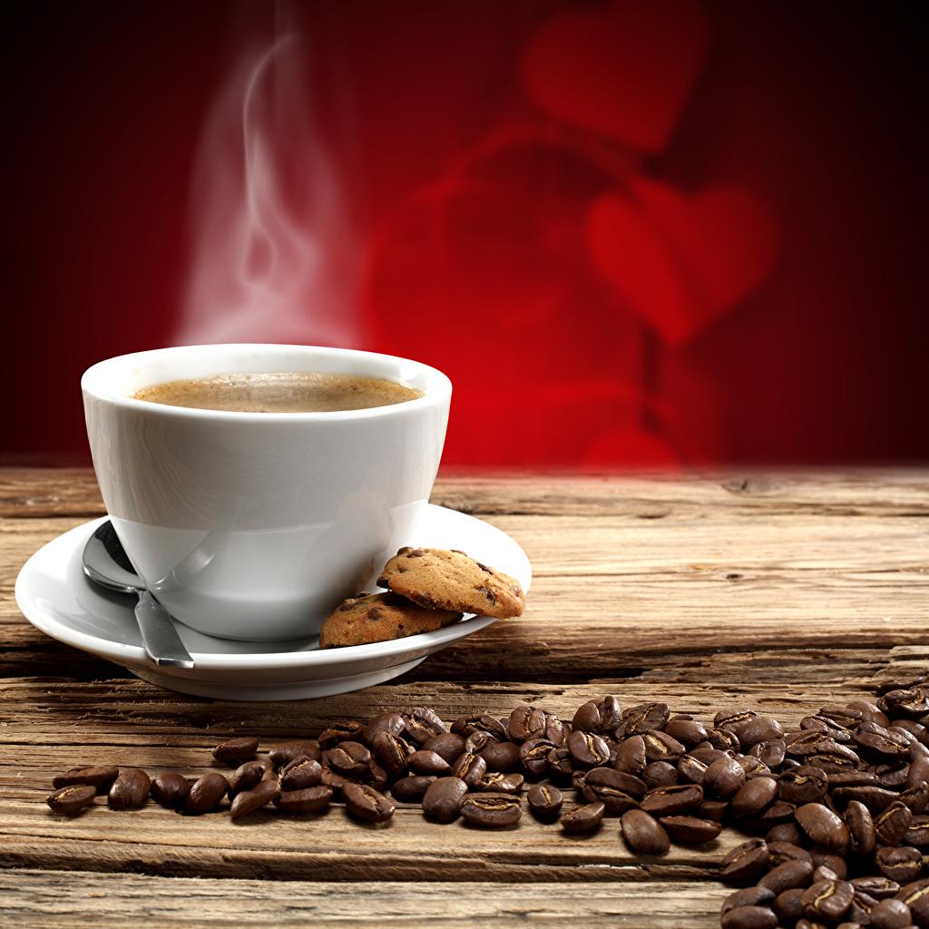 Photos Coffee Grain Cup Food Saucer