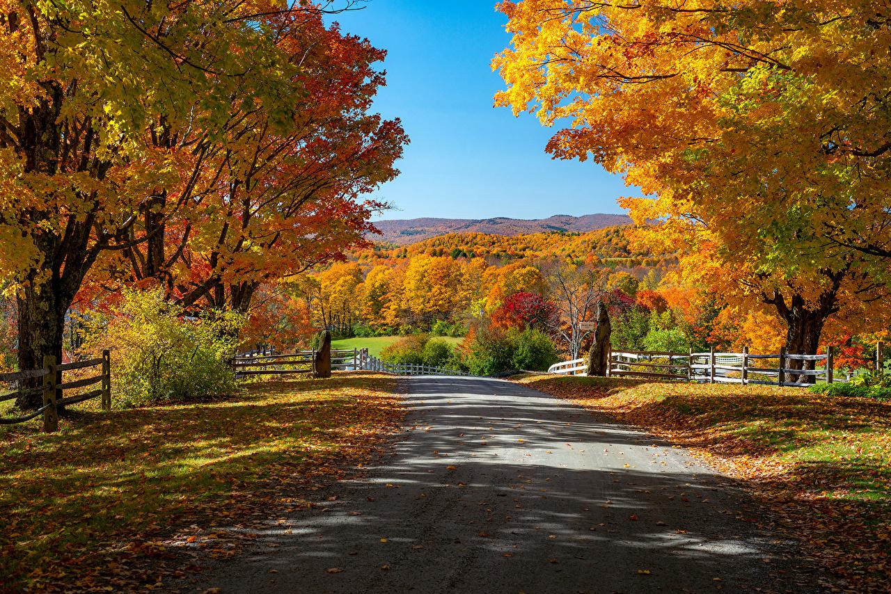 Bilder von USA Blattwerk Woodstock, Vermont Natur Herbst Wege Zaun Bäume Blatt Vereinigte Staaten Straße