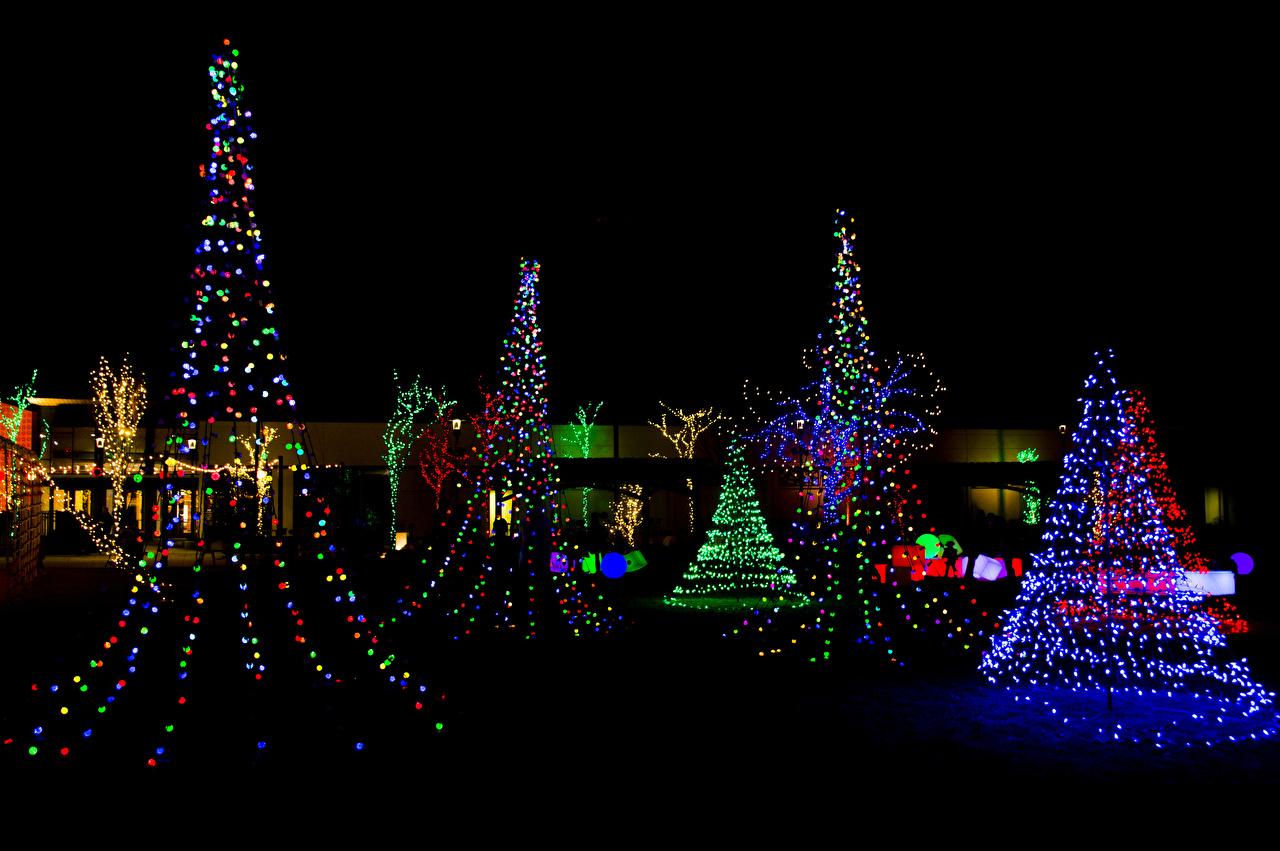 Fonds d'ecran Nouvel An Jour fériés Nuit Arbre de Noël Illuminations de Noël télécharger photo