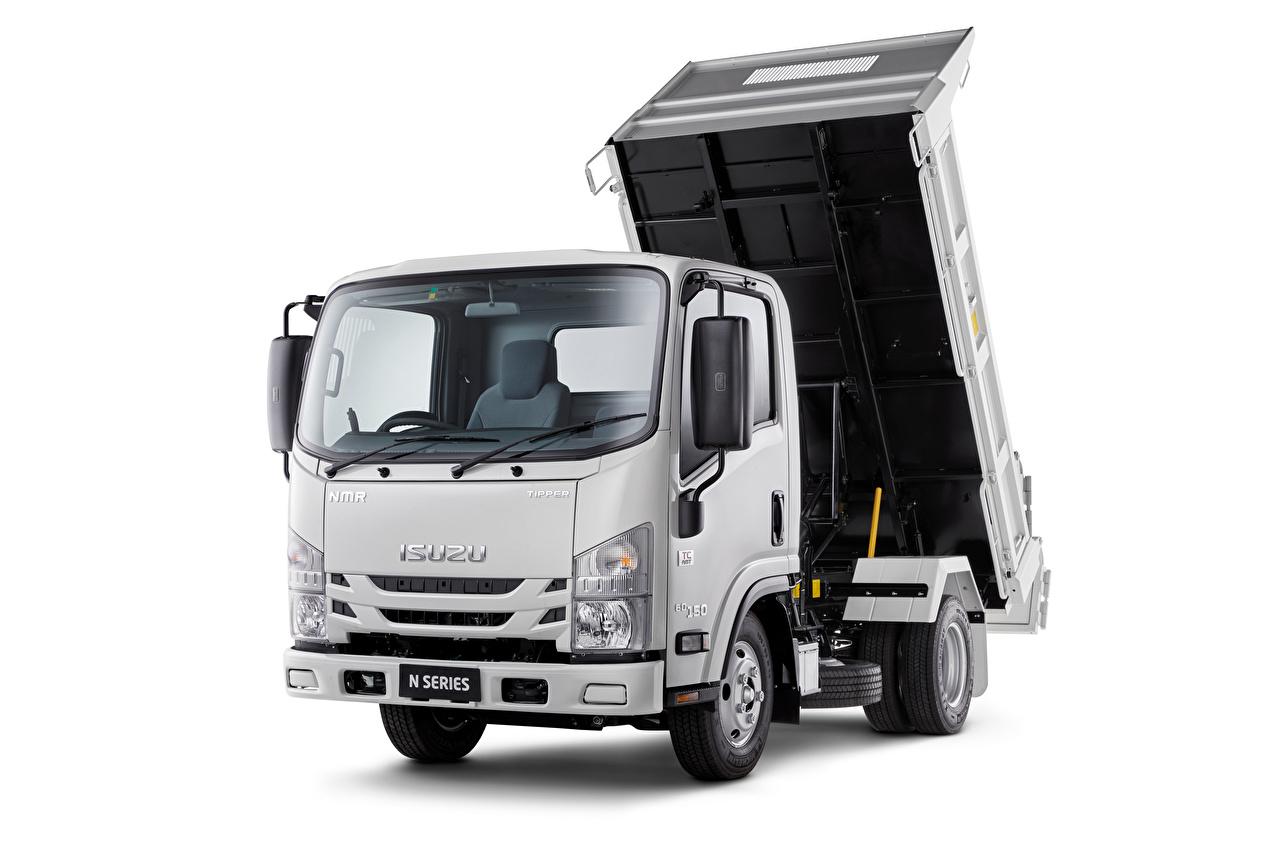 Wallpaper Isuzu lorry NMR 60-150 Tipper, AU-spec, 2020 Cars White background Trucks auto automobile