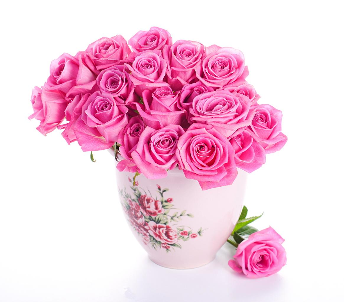 Image Bouquet Rose Pink Color Flowers Vase White Background
