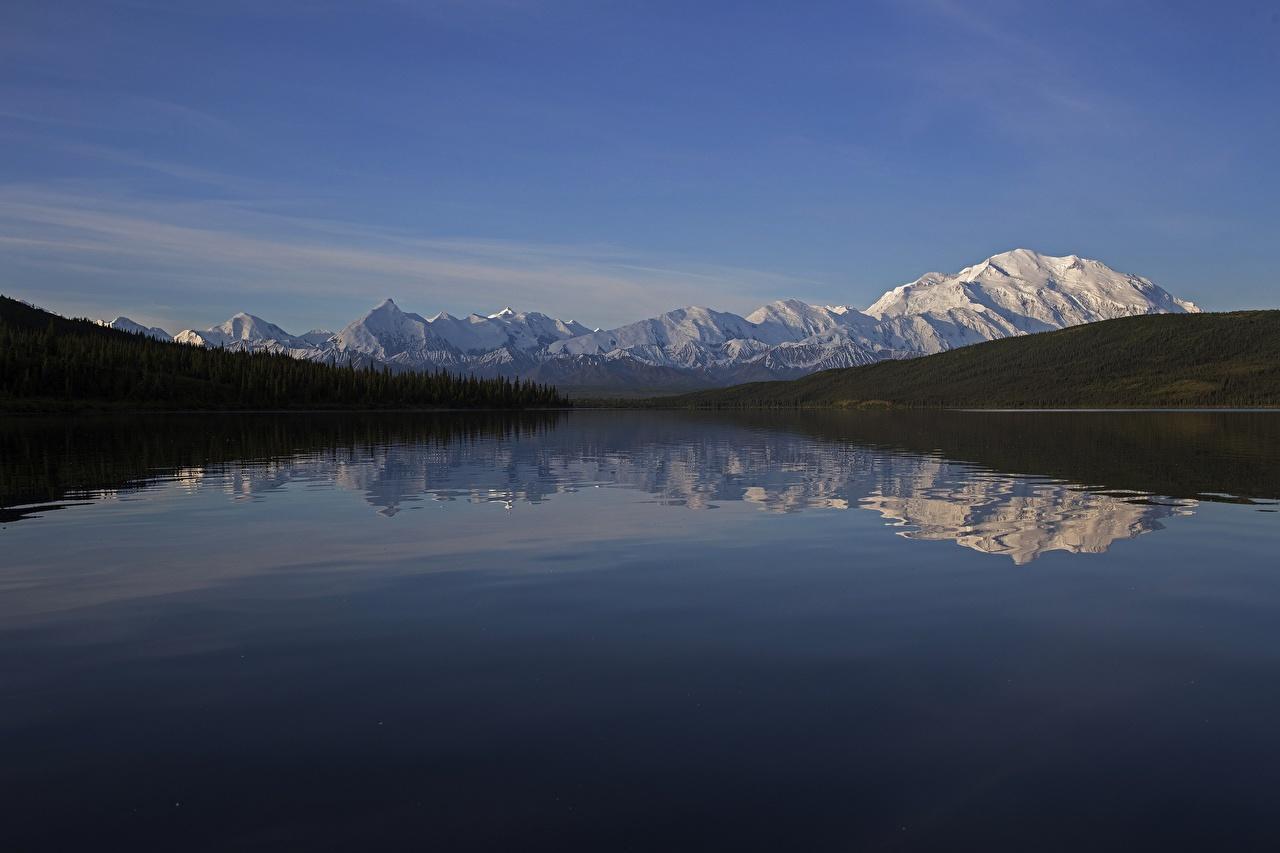 Fotos Alaska USA Denali National Park , mount Denali Natur Gebirge Schnee Wälder Spiegelung Spiegelbild Flusse Vereinigte Staaten