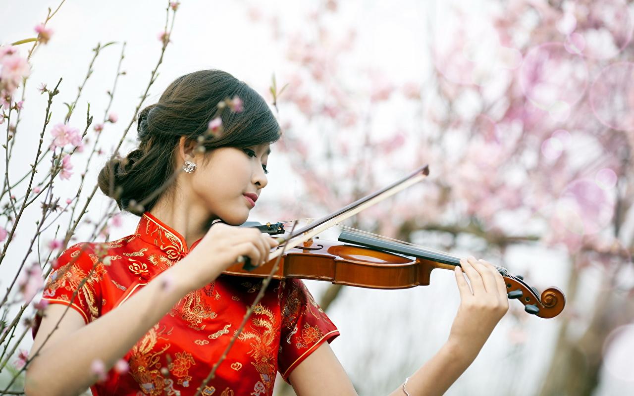 Fotos von Violine Brünette unscharfer Hintergrund Mädchens Asiatische Hand Musikinstrumente Bokeh junge frau junge Frauen Asiaten asiatisches