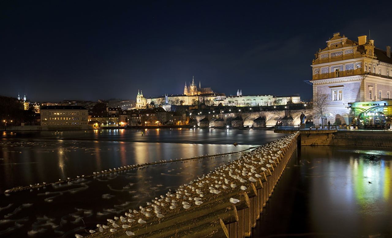 Photos Prague Czech Republic Night Cities night time