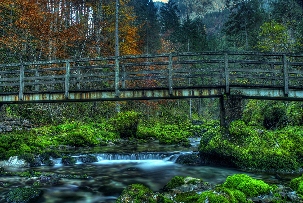 Photos Germany Schwarzbach river HDRI Nature Bridges Forests Moss Stones Rivers HDR