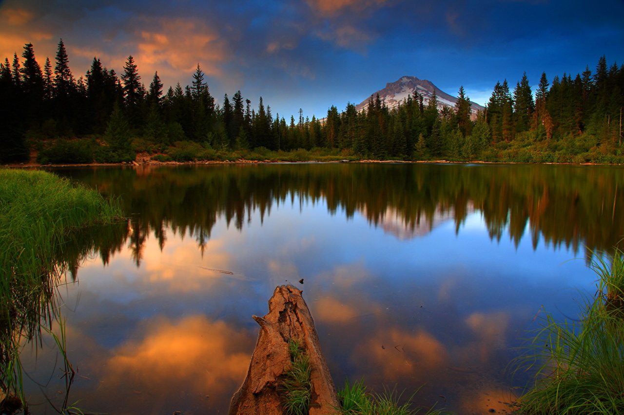 Photos Usa Mt Hood National Oregon Nature Lake Forest Landscape