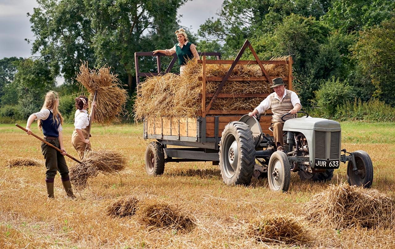 Fotos von Deutschland traktoren arbeitet Felder Menschen Heu Traktor Arbeit arbeiten Acker