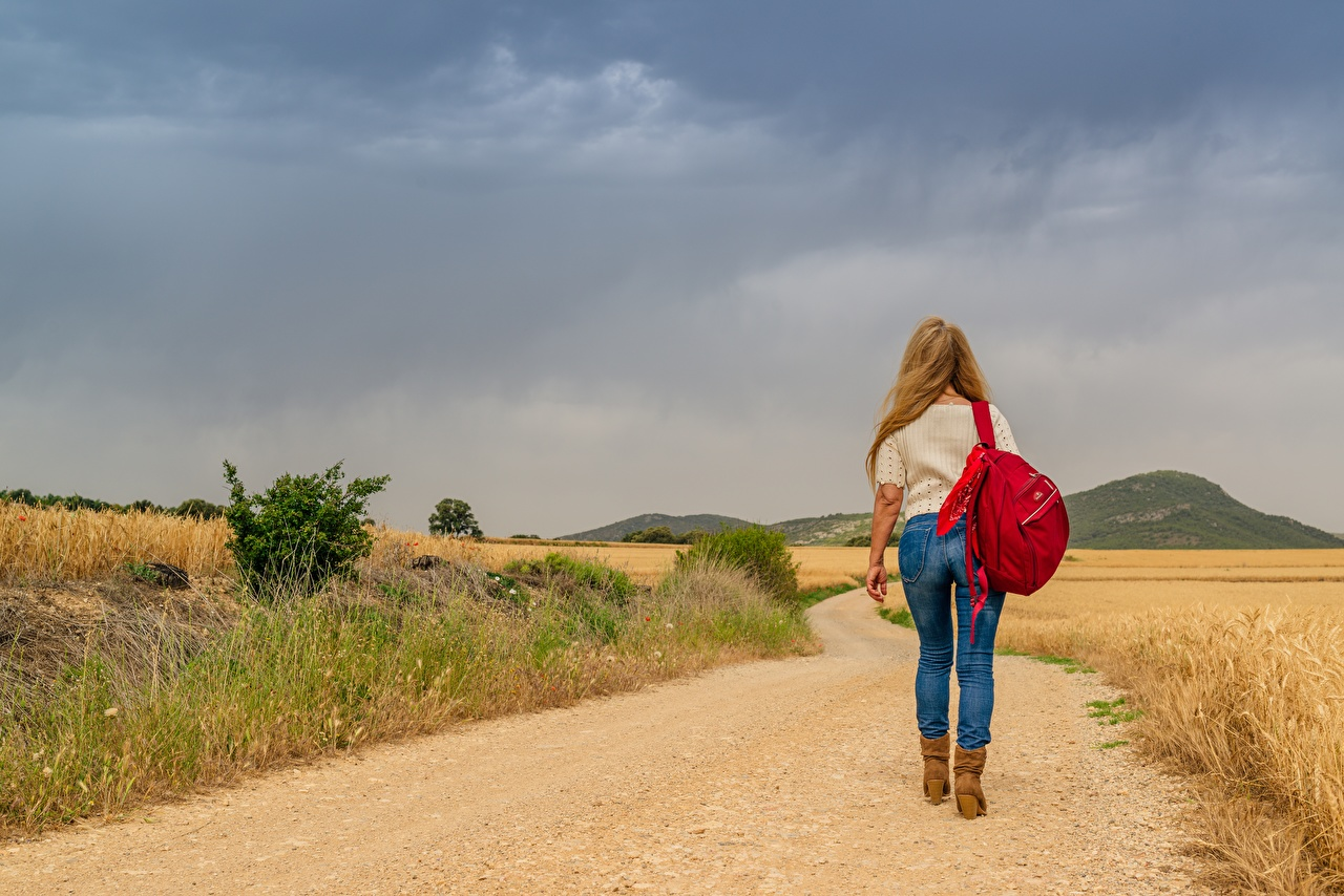 Desktop Hintergrundbilder Blondine Rucksack gehen Mädchens Wege Bein Jeans Gras Hinten Blond Mädchen geht Wanderung junge frau Spaziergang junge Frauen Straße