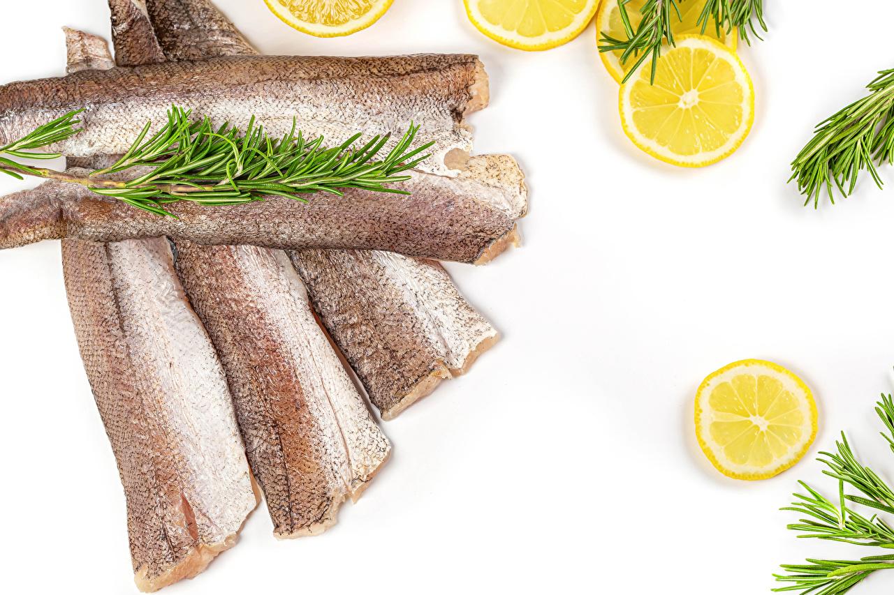 Foto Zitrone Fische - Lebensmittel Gemüse das Essen Weißer hintergrund Zitronen Lebensmittel