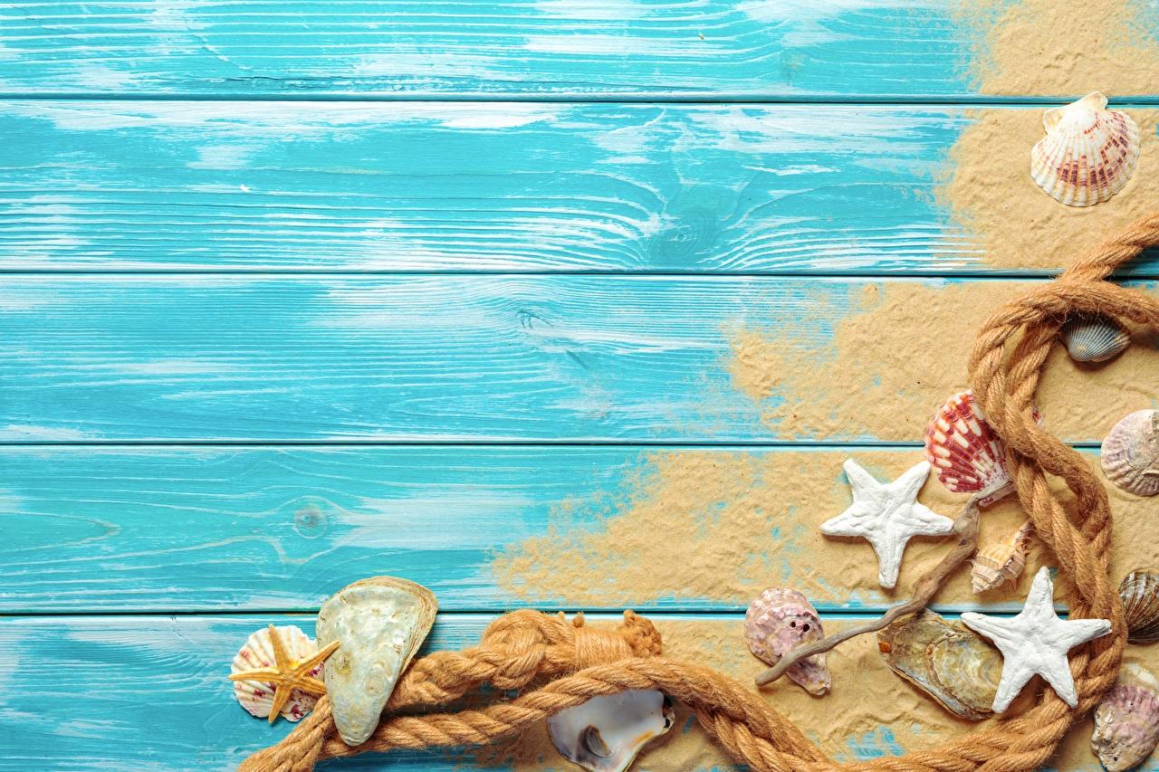 Wallpaper Starfish Rope Summer Sand Shells Template greeting card Wood planks sea stars boards