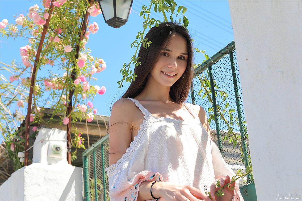 Bakgrundsbilder Brunhårig tjej Leende Leona Mia härlig Unga kvinnor Blick Söt ung kvinna ser