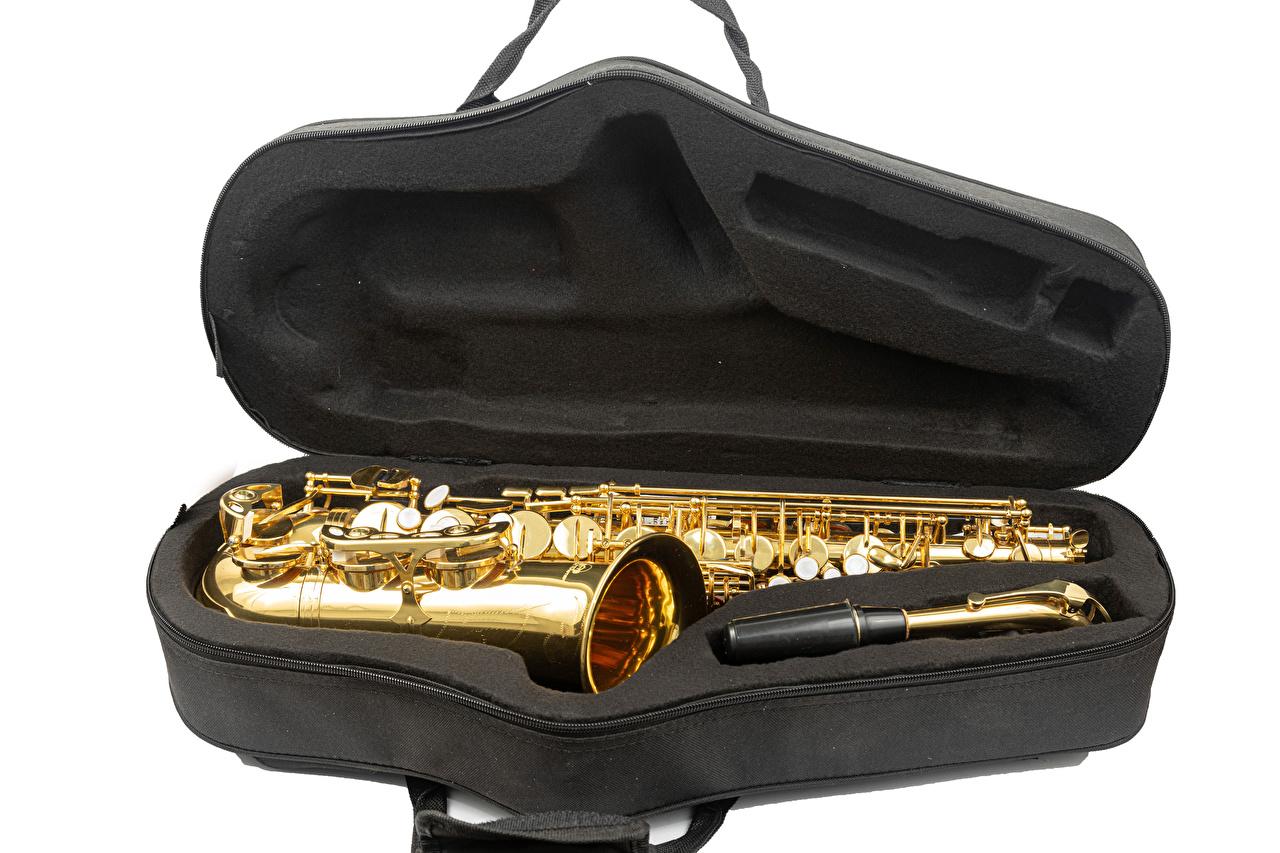 Fotos von Saxophone Musik Weißer hintergrund Musikinstrumente