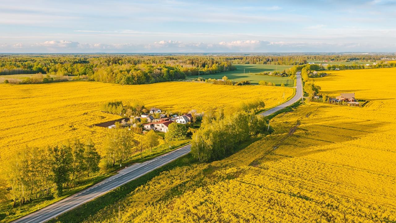 Bilder von Litauen Natur Felder Straße Von oben Wege Acker