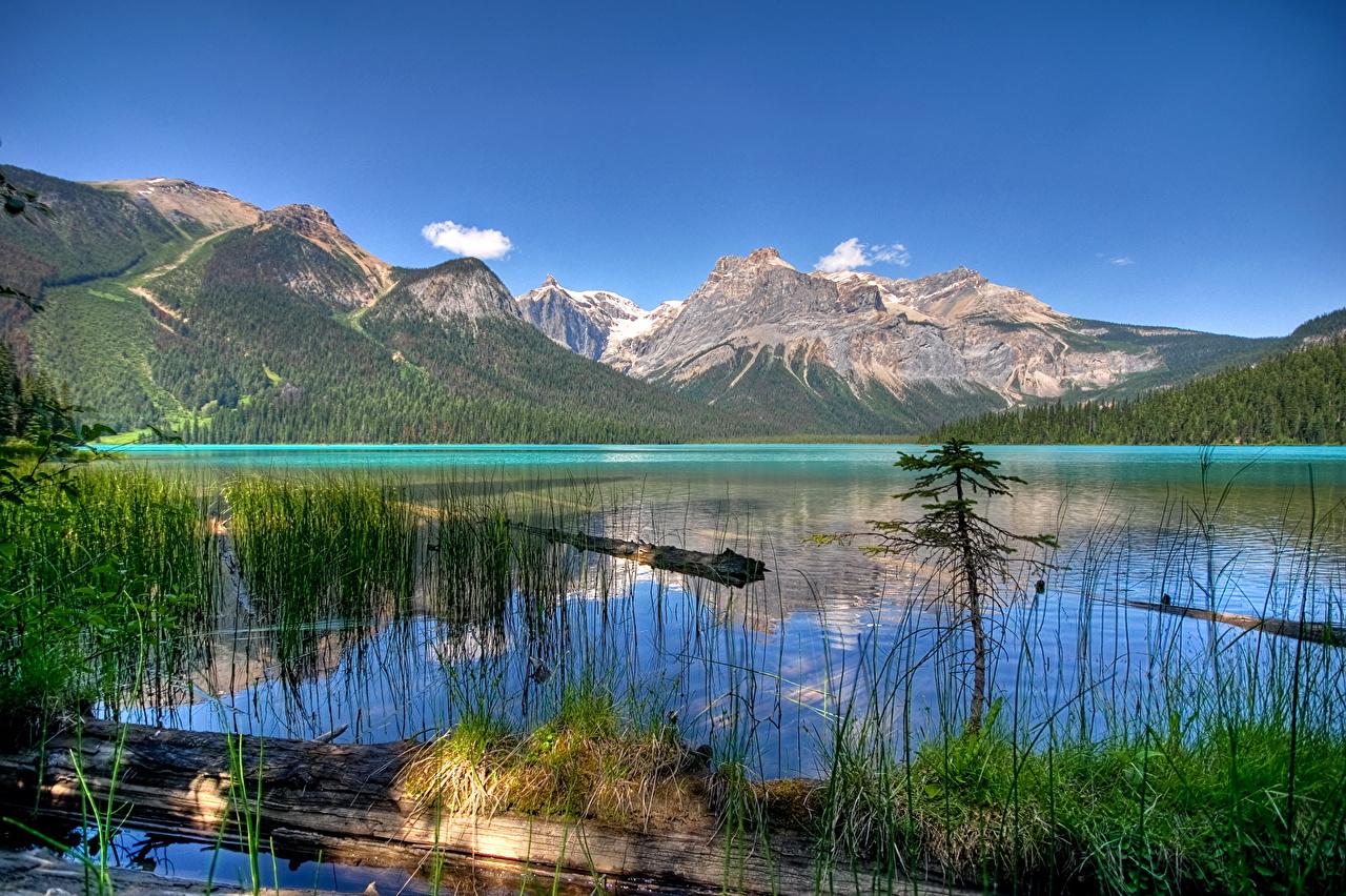 Fonds D Ecran Lac Canada Parc Montagnes Photographie De Paysage Emerald Yoho Nature Telecharger Photo