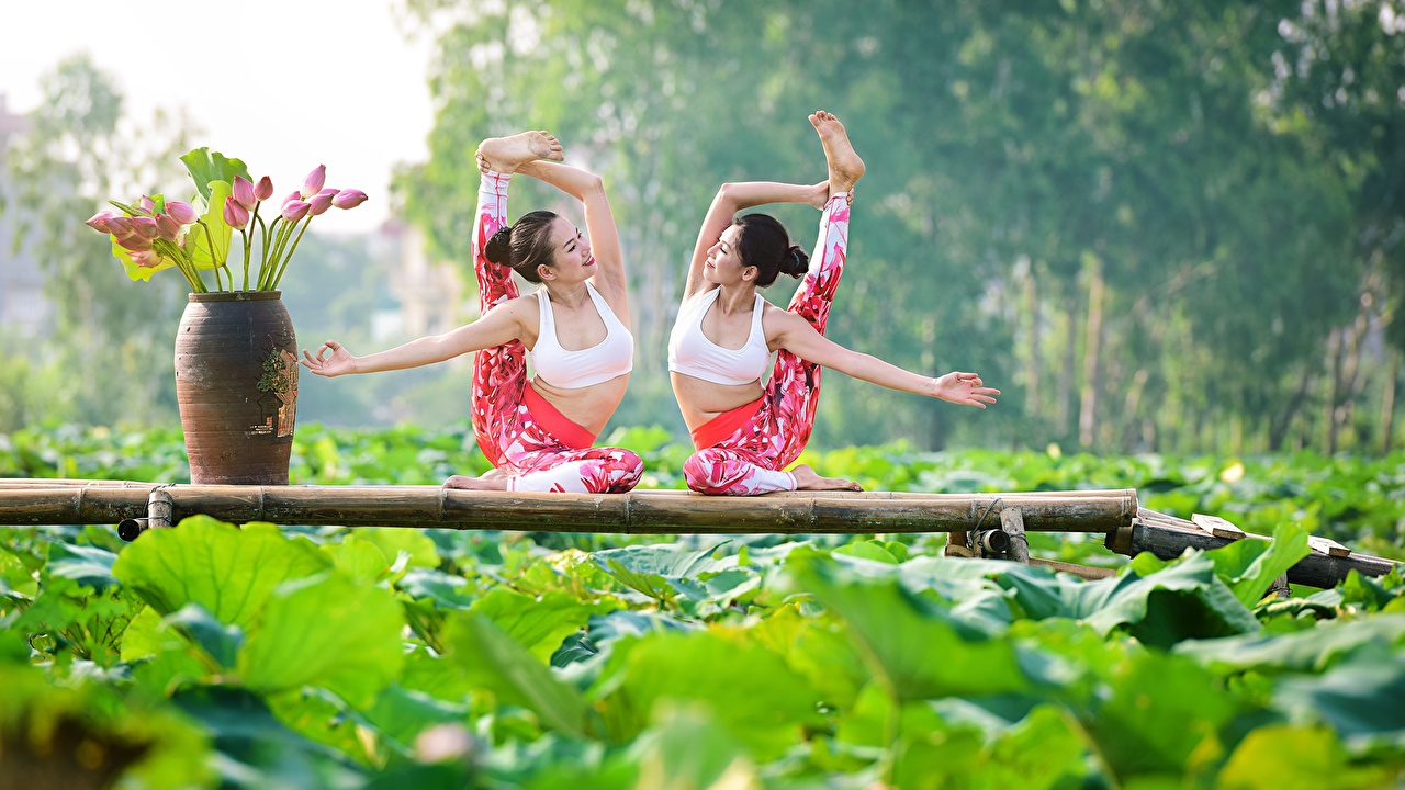 Images Stretch exercise 2 Girls Gymnastics Asian stretching Two female young woman Asiatic
