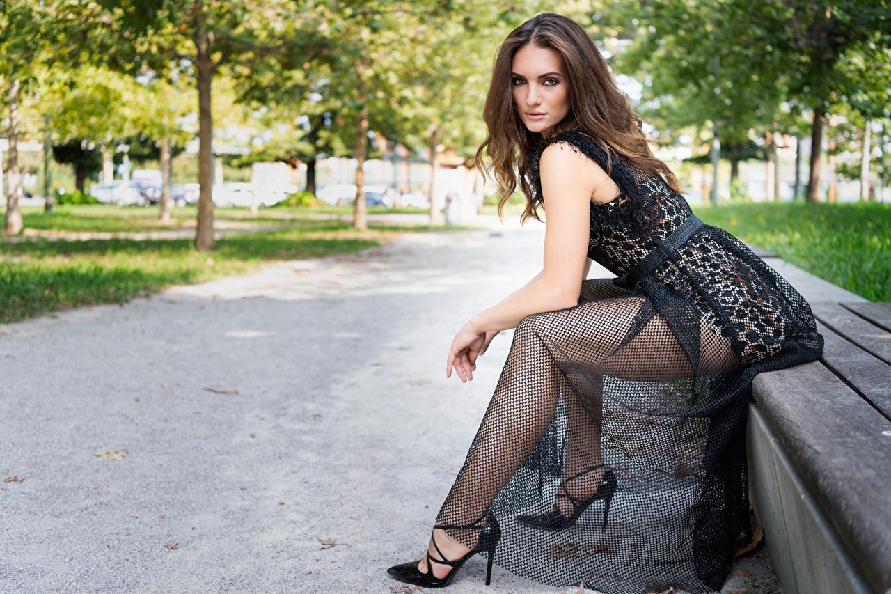 Foto Mädchens Bein Sitzend Bank (Möbel) Starren Kleid junge frau junge Frauen sitzt sitzen Blick