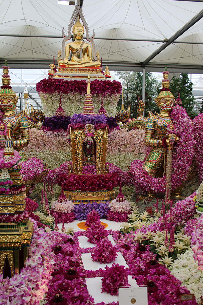 Fotos von London England Chelsea flower show Orchideen Park Design
