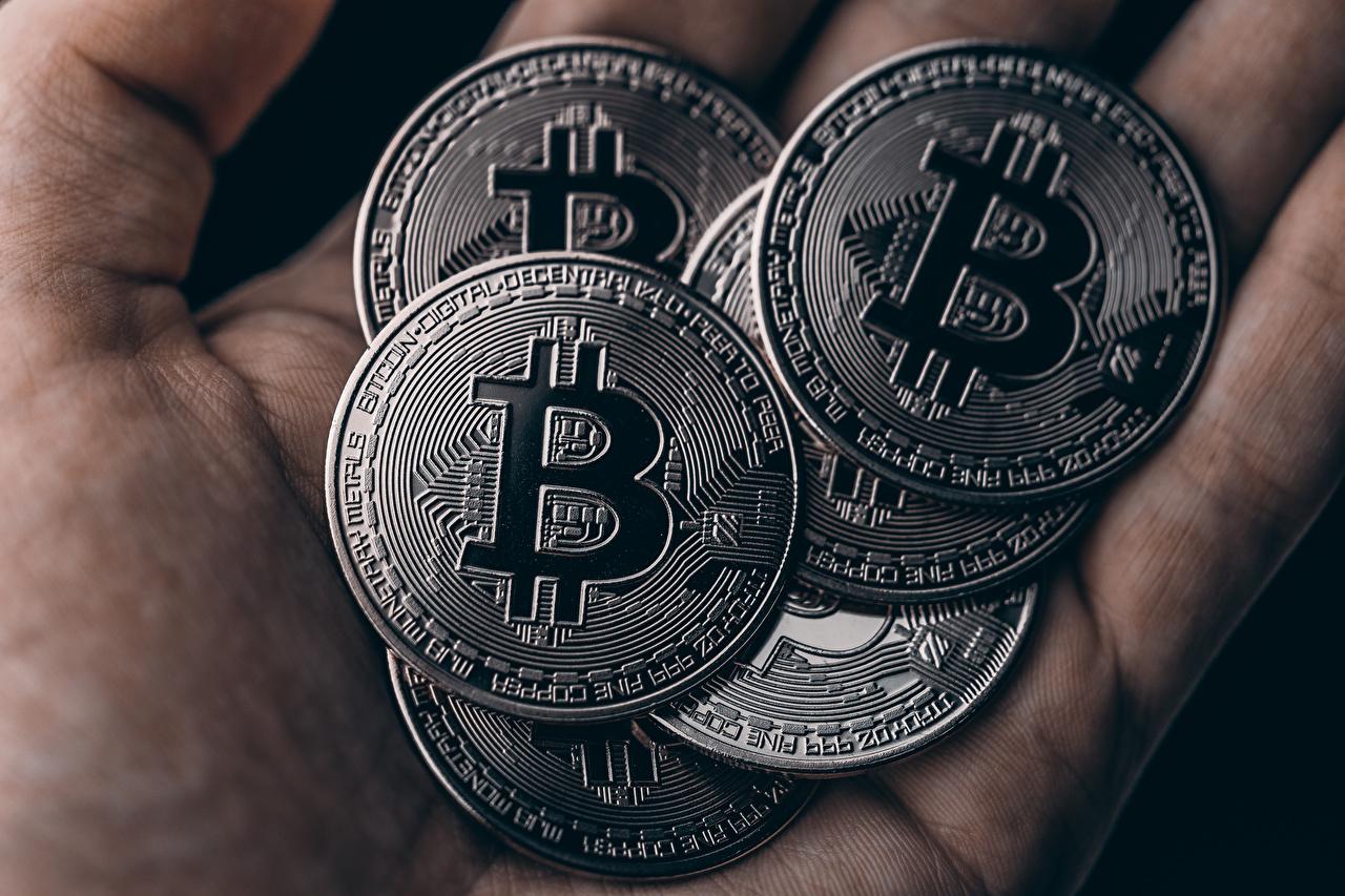 Bilder Münze Bitcoin Geld hautnah Nahaufnahme Großansicht