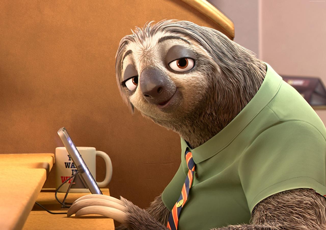 Desktop Hintergrundbilder Zootopia, Sloth 3D-Grafik Zeichentrickfilm Starren Animationsfilm Blick