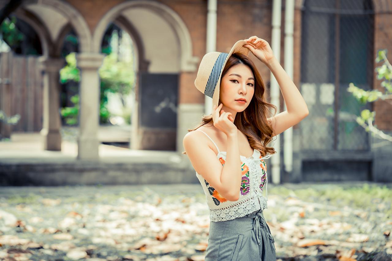 Bilder Braune Haare Bokeh Der Hut Mädchens asiatisches Hand Blick Braunhaarige unscharfer Hintergrund junge frau junge Frauen Asiaten Asiatische Starren