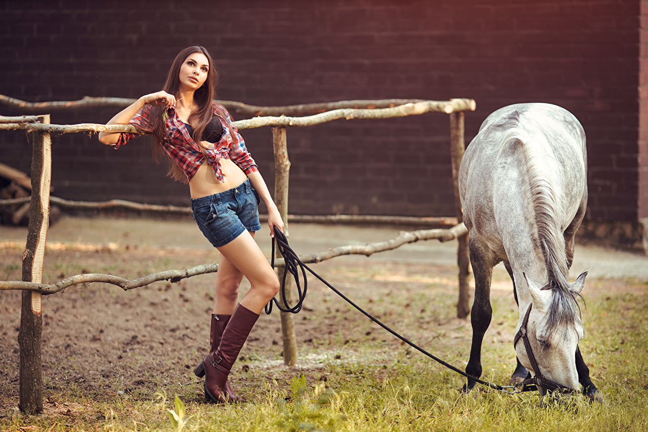 Photo Horses Brown haired Wearing boots Girls Shorts Glance animal horse female young woman Staring Animals