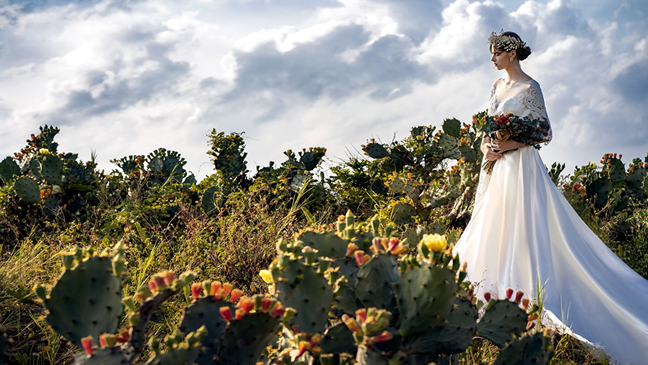 Desktop Wallpapers noces brides Bouquets Wreath female Cactuses Dress Bride Wedding marriage bouquet Girls young woman cacti gown frock